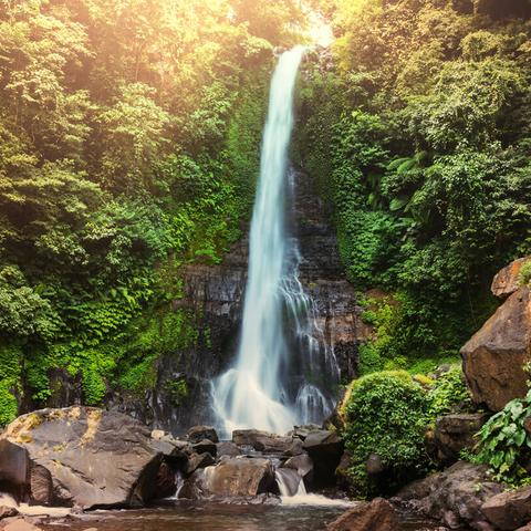 Meditation practice: Transcendental Meditation