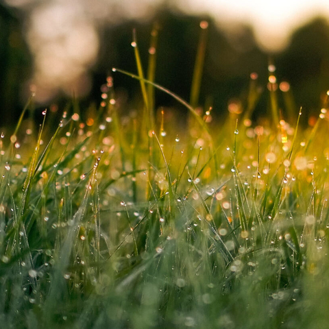 Meditation benefit: Acceptance