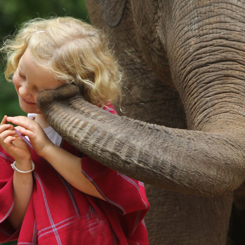 Meditation benefit: Happiness ∙ kids