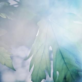 Meditation name: Ambient Music: Weightless (Prayer)