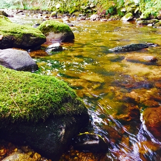 Meditation name: Sleep By a River
