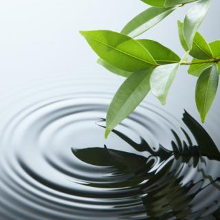 Meditation name: Floating Surrender Meditation