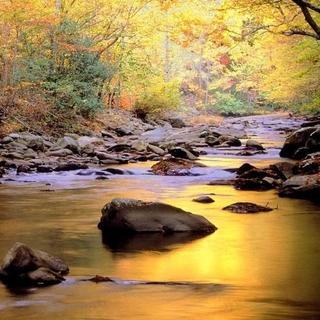 Meditation name: Sounds of Nature: Soft River