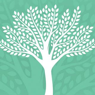 Meditation name: Mindfulness of Feelings