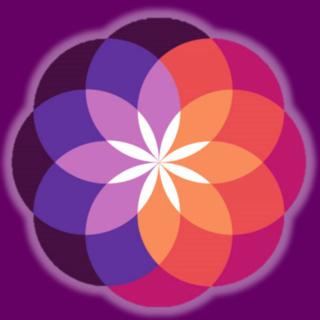 Meditation name: Meditação Mindfulness Para Iniciantes | Você Mais Centrado