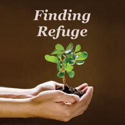 Meditation name: Finding Refuge