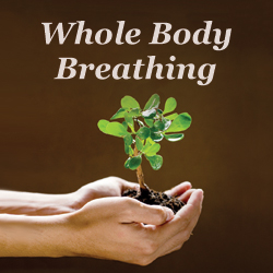 Meditation name: Whole Body Breathing