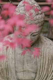 Meditation name: Von der Einsamkeit zum Frieden