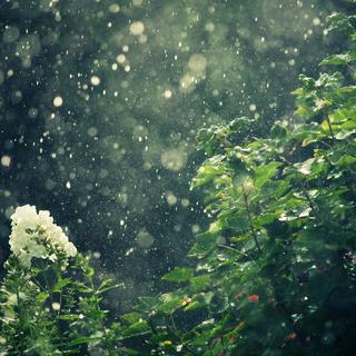 Meditation name: Jazzy Rain