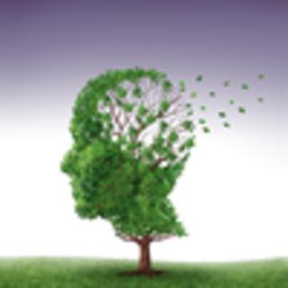 Meditation name: Visualisatie mbv. de adem