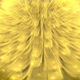 Meditation name: Alignmnent III