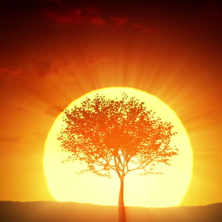 Meditation name: Revitalize Your Energy