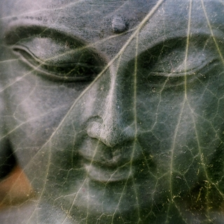 Meditation name: Meditare Evocando Un'Emozione Difficile