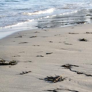 Meditation name: Morning Waves