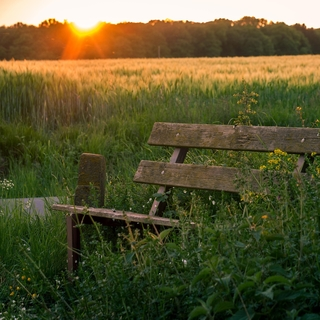 Meditation name: Bodyscan — 30 Minuten