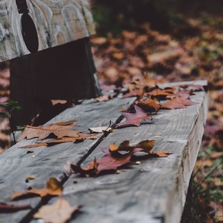 Meditation name: Bodyscan — 45 Minuten