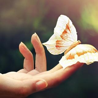 Meditation name: Loving-Kindness Meditation
