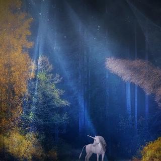 Meditation name: The Unicorn Glade