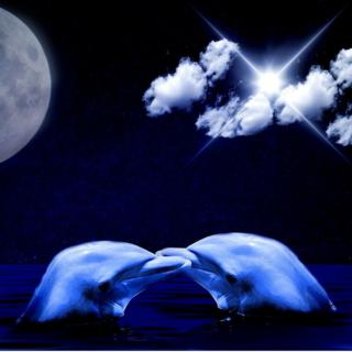 Meditation name: Kids Sleep Meditation: Dolphin Dreams