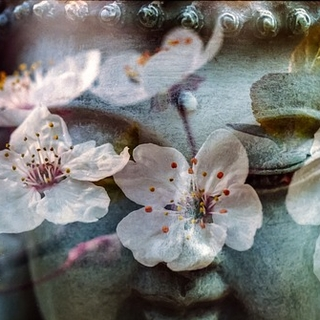 Meditation name: Yoga Nidra to Shift Within