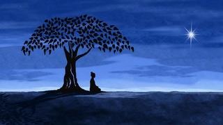 Meditation name: Meditacion en la Respiracion