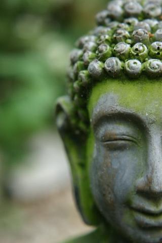 Meditation name: 天天都是感恩节
