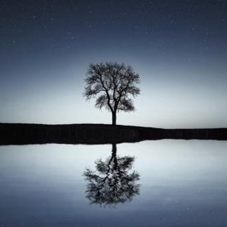 Meditation name: Checking In Meditation