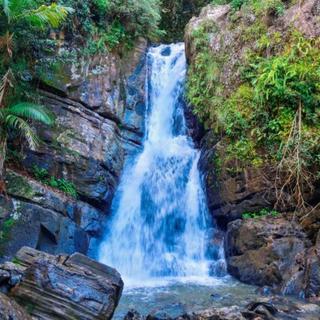 Meditation name: Rainforest Creek (30 mins)