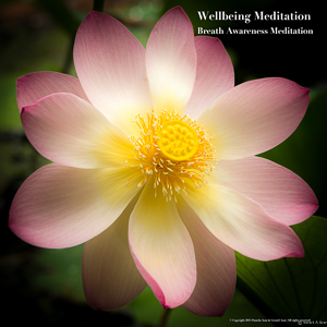 Meditation name: Wellbeing Breath Awareness Meditation