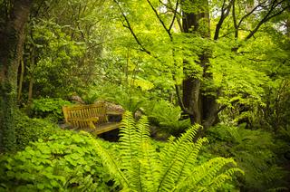 Meditation name: Wellbeing Garden Sanctuary Meditation