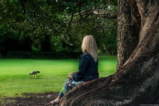 Meditation name: Wellbeing Body Scan Meditation