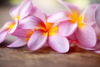 Meditation name: Loving Kindness