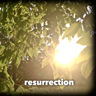 Meditation name: Mystery of New Life in the Resurrection - A Scripture Meditation