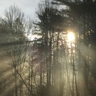 Meditation name: Morning Peace