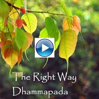 Meditation name: The Right Way: Dhammapada Verse 11-16