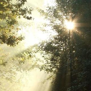 Meditation name: St. Francis Gayatri: Earth Chant