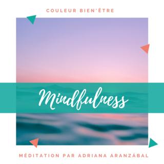 Meditation name: Mindfulness en Français