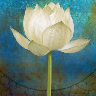 Meditation name: Ananda