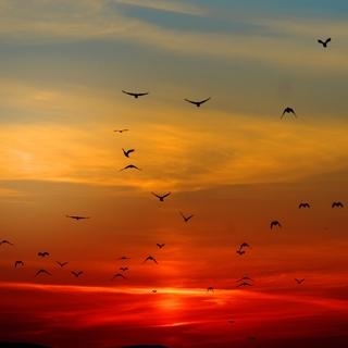 Meditation name: Mantra at Dawn