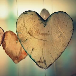 Meditation name: Amor Bondadoso y Compasivo
