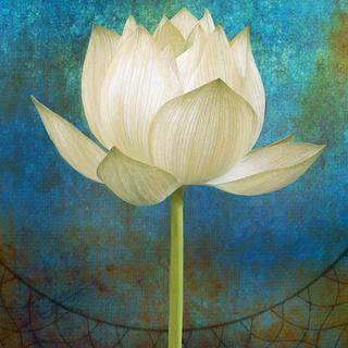 Meditation name: Ananda: Extended Track