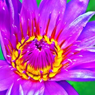 Meditation name: Yoga Nidra mit Ho'oponopono