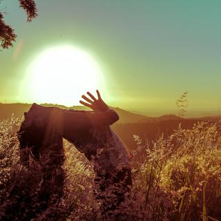 Meditation name: Profunda Gratidão