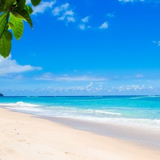 Meditation name: White Sand Beach For Weight Loss
