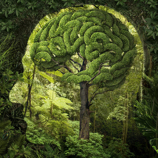 Meditation name: Headache Relief Meditation