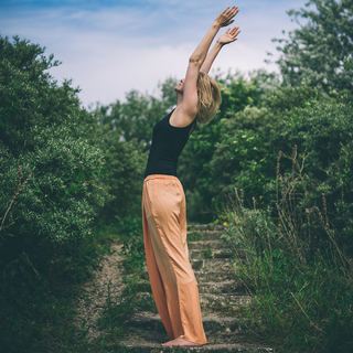 Meditation name: Trancereis Naar De Bovenwereld