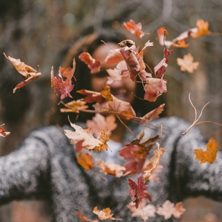 Meditation name: Phantasiereise Herbst: Spaziergang im Wald
