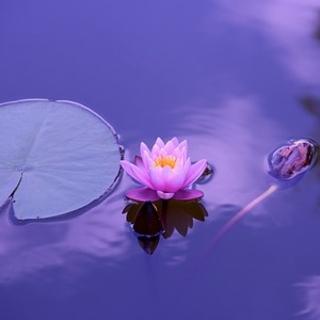 Meditation name: Stillness, Well Being, And Beyond
