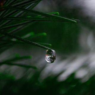Meditation name: Beautiful Scenery