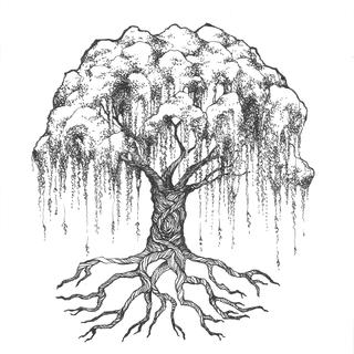 Meditation name: Willow Tree Meditation